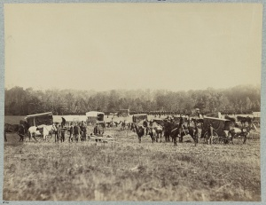 Ambulance Train, Union 2nd Army Corps, 1st Division (1861, U.S. Library of Congress, public domain).